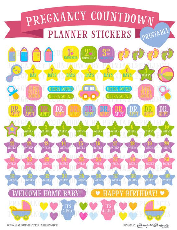Countdown to pregnancy stickers, Pregnancy Planner Stickers, baby
