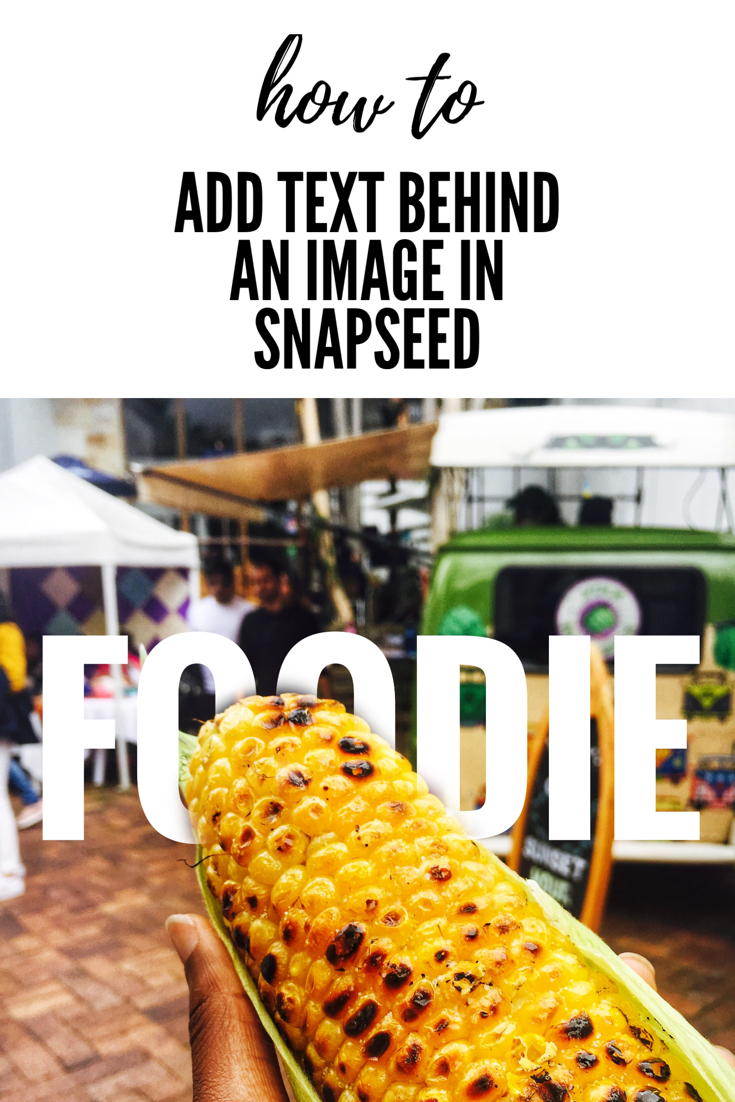 How to add text behind an object in Snapseed | The Cactus