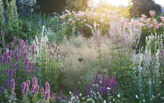 Piet oudolf 39 s garden at hummelo c walter herfst garden for Piet oudolf pflanzen