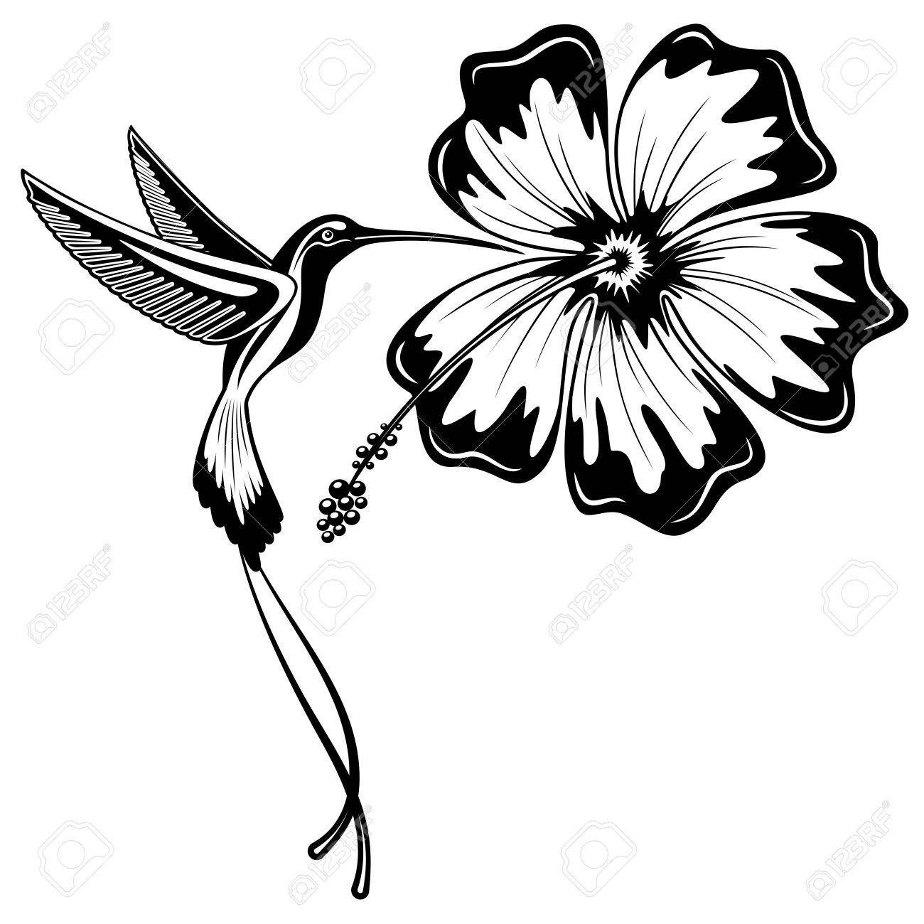 Hummingbird And Hibiscus Tattoo Hibiscus Tattoo Hummingbird Tattoo Hummingbird Drawing