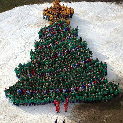 Human Christmas Tree Formation Cool White House Christmas Christmas Christmas Tree