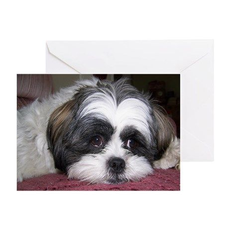 Cute Shih Tzu Dog Greeting Cards (Pk of 20) on CafePress.com