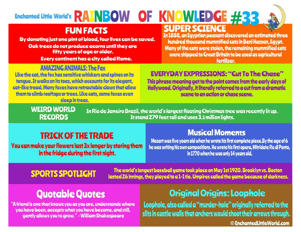 RAINBOW OF KNOWLEDGE 33 World records, Weird world, Fun