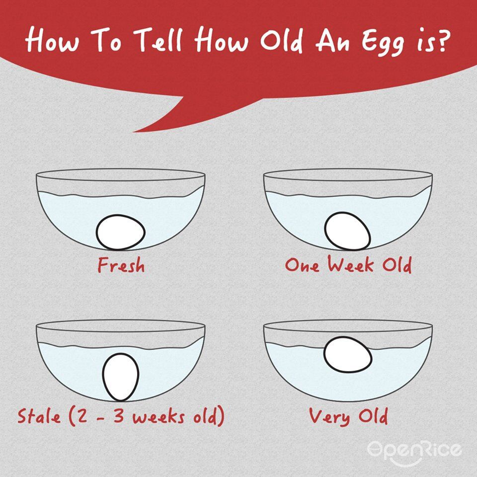 How to tell you good your egg is!