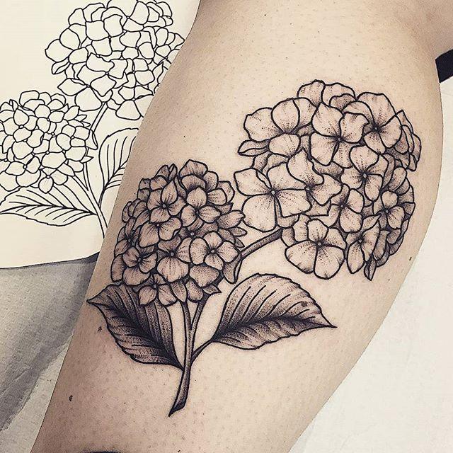 I Want Tattoo Tattoogirl B W Hydrangea Hydrangeatattoo Hortencia Hortencias Hydrangea Tattoo Floral Thigh Tattoos Flower Tattoo Shoulder