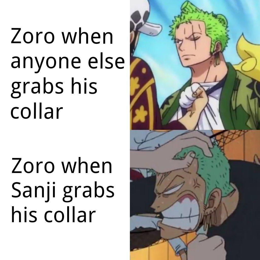 Zoro Sanji One Piece Funny Zoro Otaku Anime