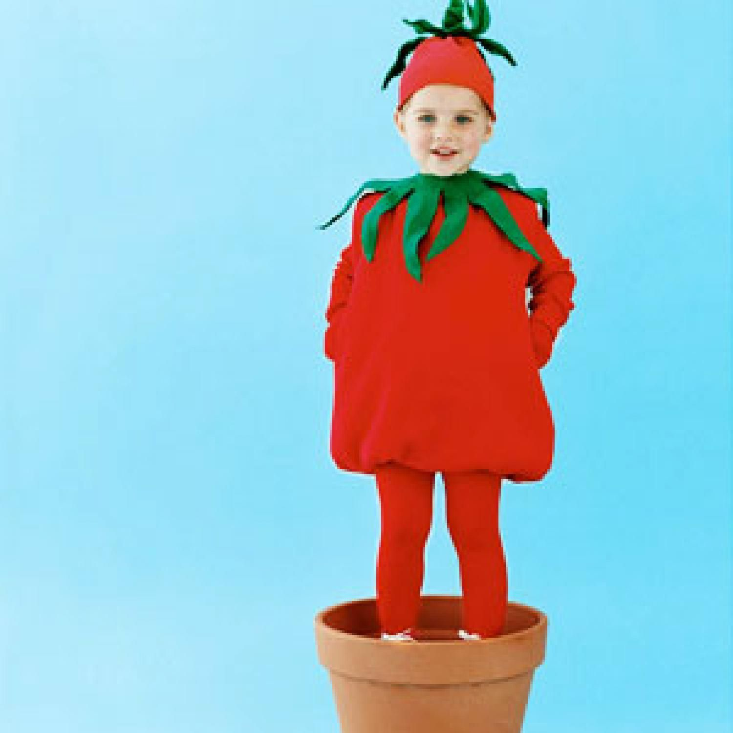 Carrot costume for a girl with her own hands (photo)