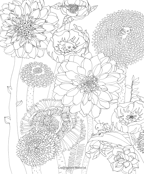 Amazon.co.jp: Color Me Enchanted: A Coloring Book of Fairy ...
