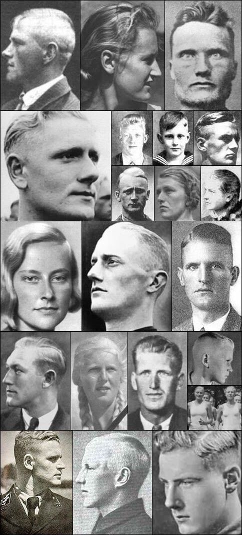 Some Typical Nordic Facial Characteristics Racial Nordic Norway Viking