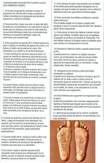 Curiosidades De Nuestro Cuerpo Dance Shoes Sport Shoes Ballet Dance