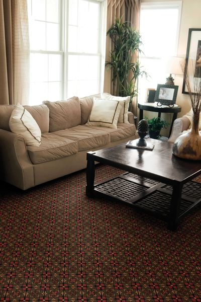 Living Room With Lots Of Light And Patterned Carpet