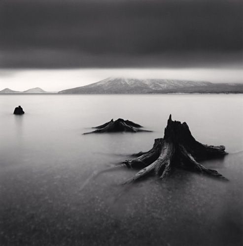 Michael Kenna - Tree Remains, Bifue, Hokkaido, Japan, 2004