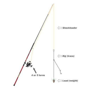 Image Result For Shock Leader For Surf Fishing Pesca In Mare Pesce
