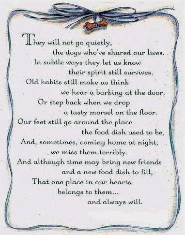 Kat Overleden Gedicht Google Zoeken Hondencitaten