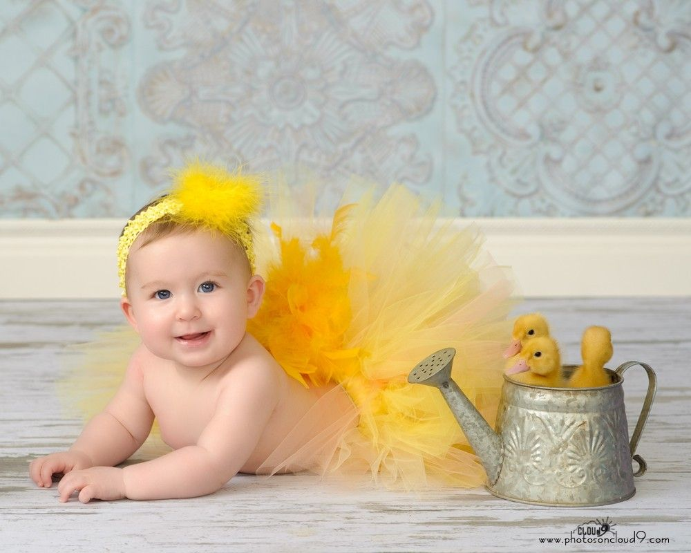 1000+ images about PHOTOG Easter on Pinterest   Toddlers, Hunt's ...