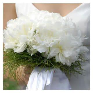 Bouquet Sposa Garofani.Bouquet Sposa Garofani Bianchi Cerca Con Google Bouquet