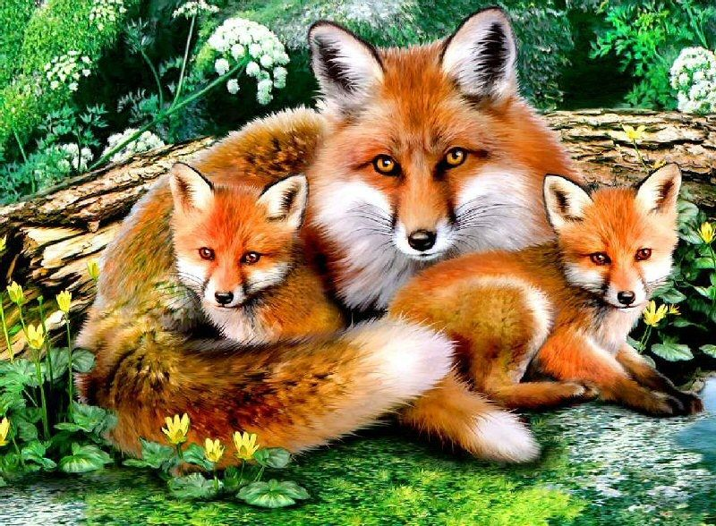 Épinglé par Sara Az sur les animaux | Peinture renard ...