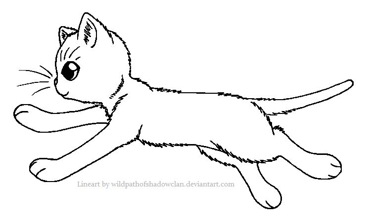 Run WindClan warrior | Warrior cat coloring pages | Pinterest