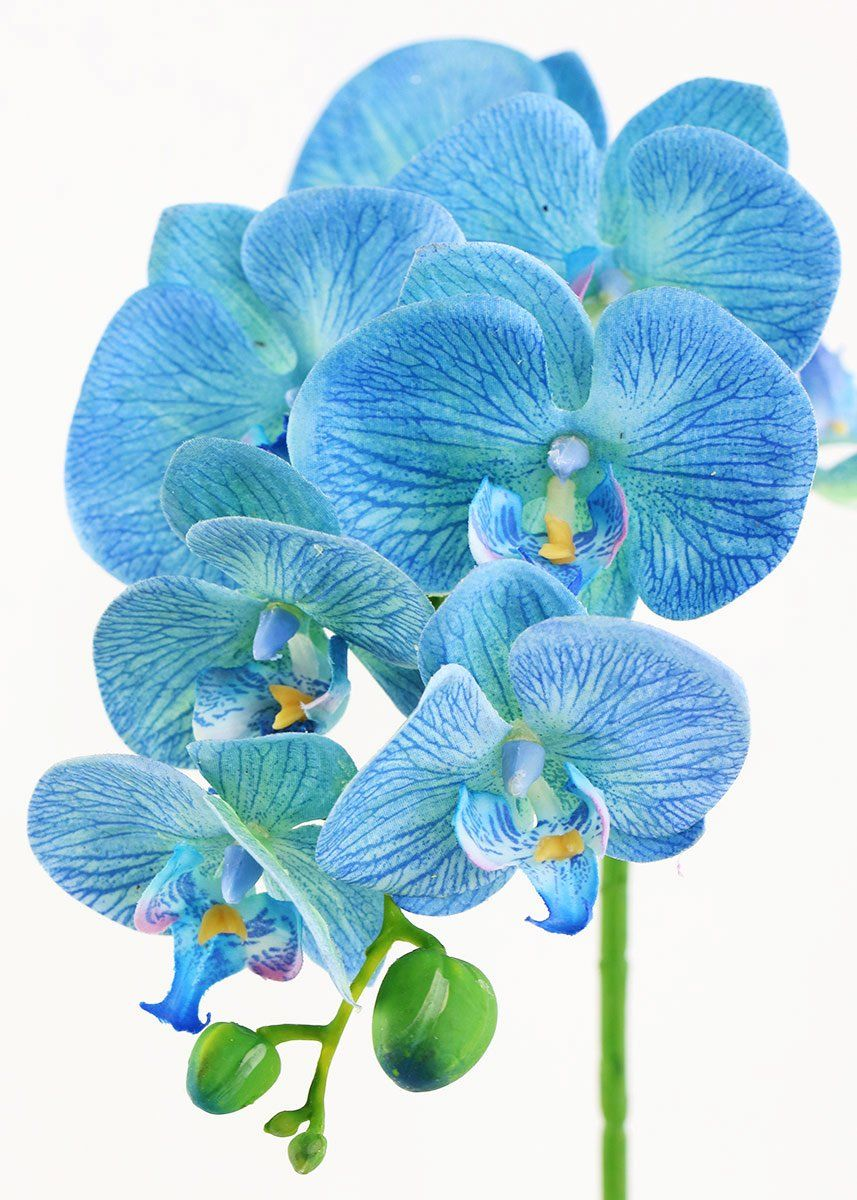 Artificial phalaenopsis orchid spray in blue 28 blue