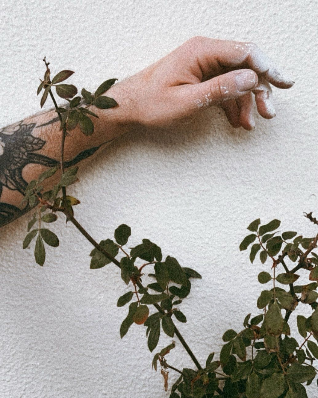 𝗗𝗜𝗬 . . . . #diy  #hand  #me #tattoo  #inked  #inkedboy  #inkedguys #photography  #nature  #plants  #plant #green