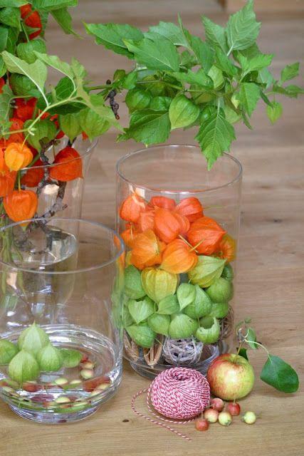 Farbenfrohe herbstdeko mit physalis tischdeko herbst for Herbst dekoration im glas