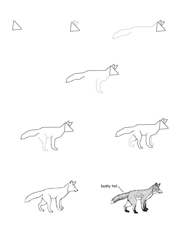 Fox Red Drawing Lesson With Images Fox Drawing Tutorial Fox