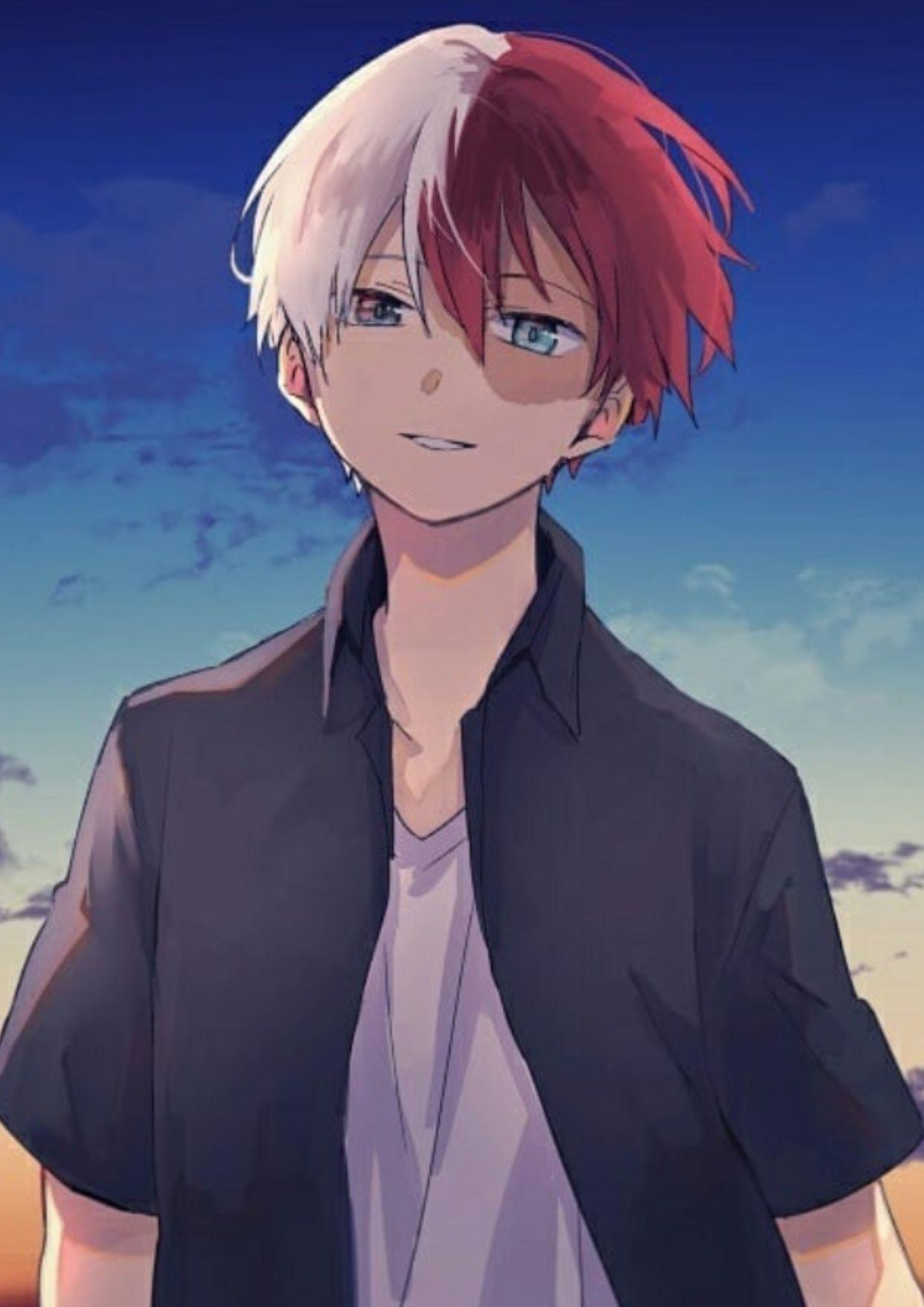 Todoroki X Reader Chapter 1