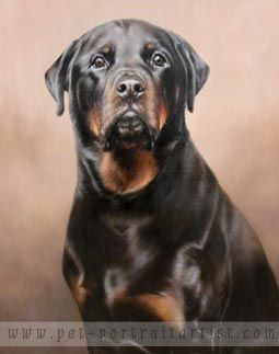 Dog Portraits Gallery In Oils On Canvas By Nicholas Beall Pet