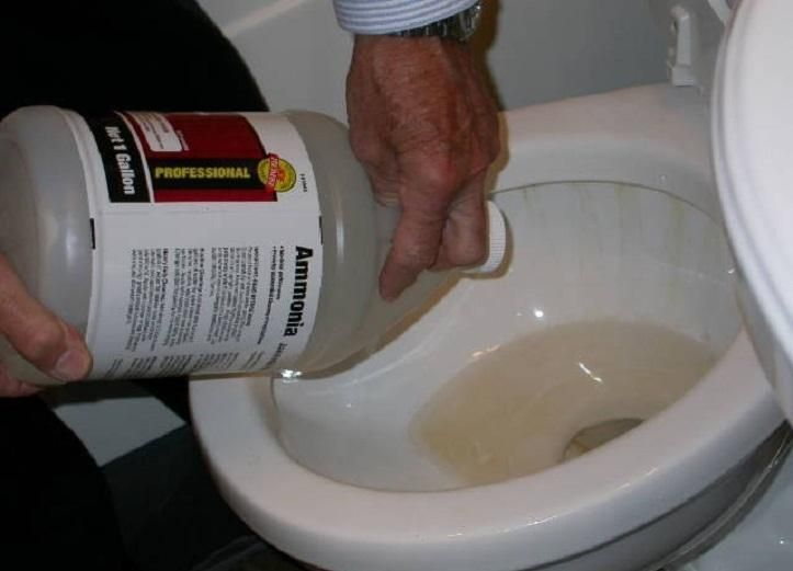 Unclog Toilet Bowl With Ammonia ~ http://lanewstalk.com/how-to ...