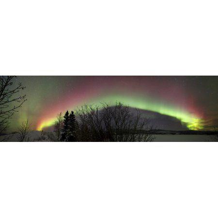 Aurora borealis with trees and Twin lakes Yukon Canada Canvas Art - Joseph BradleyStocktrek Images (51 x 16)