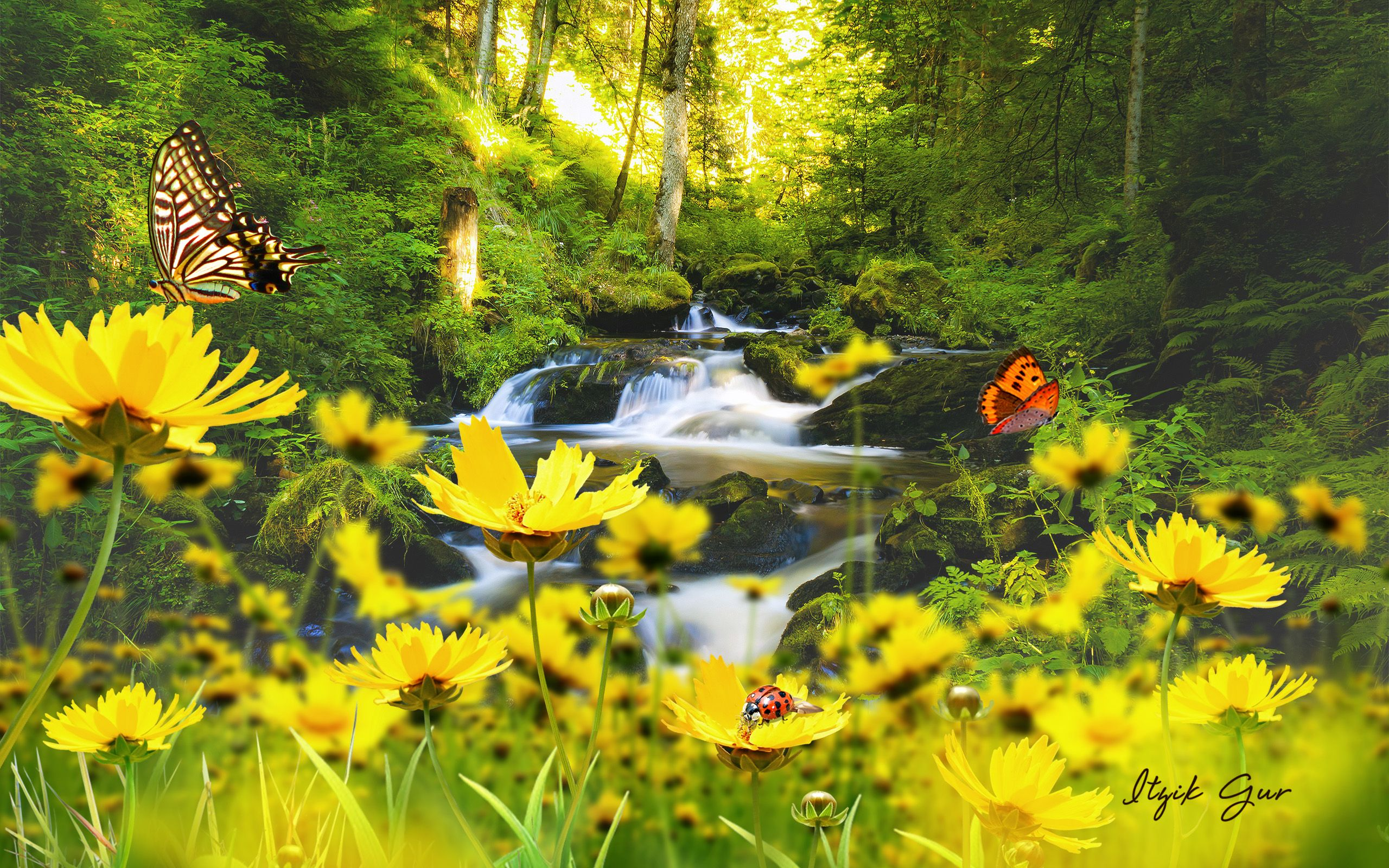 Flowers And Waterfalls Spring Time Butterflies Flowers Spring Waterfalls Waterfall Wallpaper Fragrance Diffuser Natural Waterfalls