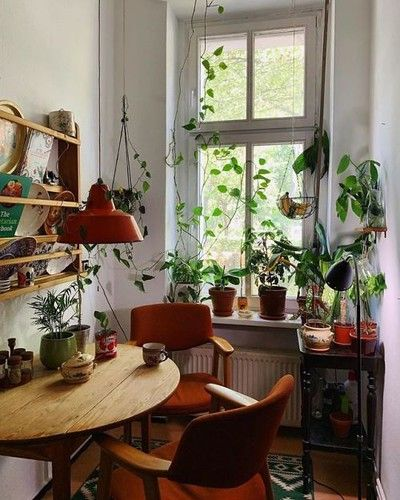 Cozy Place With A Plant Nursery In Berlin Via Reddit Source On Cozy Place House Interior Room Inspiration