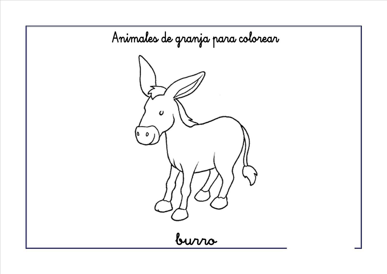 Pin de Cintia Gonzalez en Escolares | Pinterest | Burritos, Animales ...