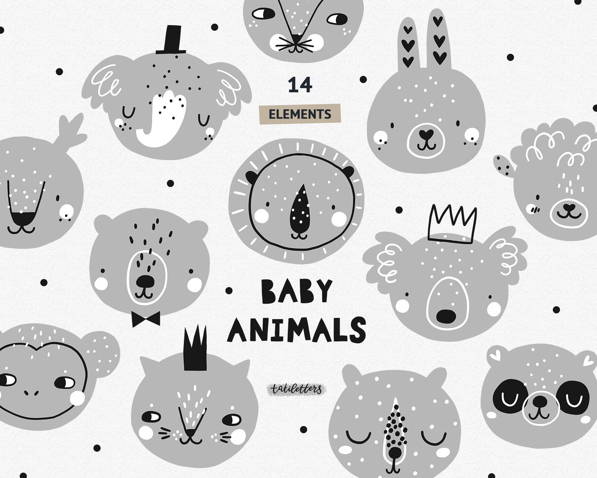 Zebra Jungle Animals, Baby Animals, Safari, Animals - Cuadros De Animales  Para Bebes Clipart - Full Size Clipart (#4560231) - PinClipart