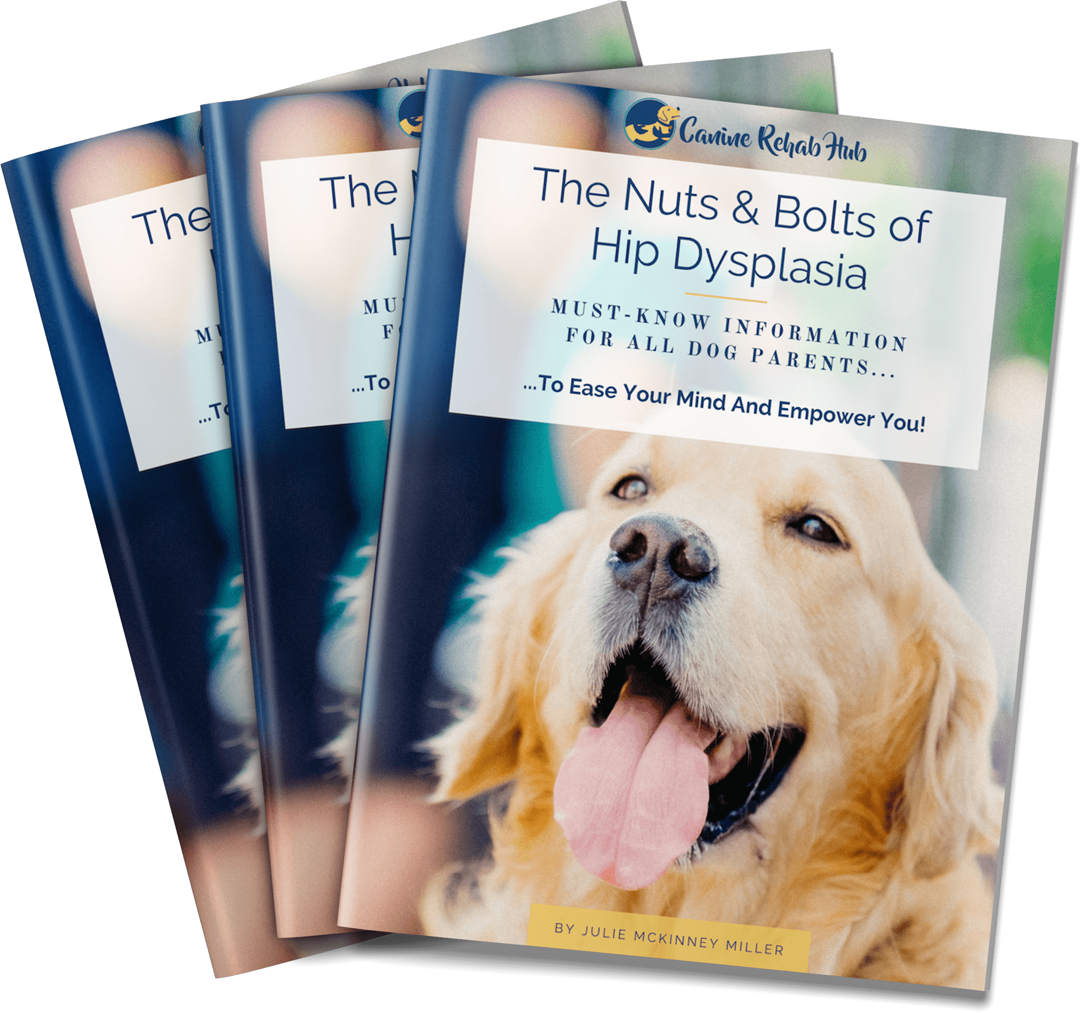 The Nuts and Bolts of Hip Dysplasia MustKnow