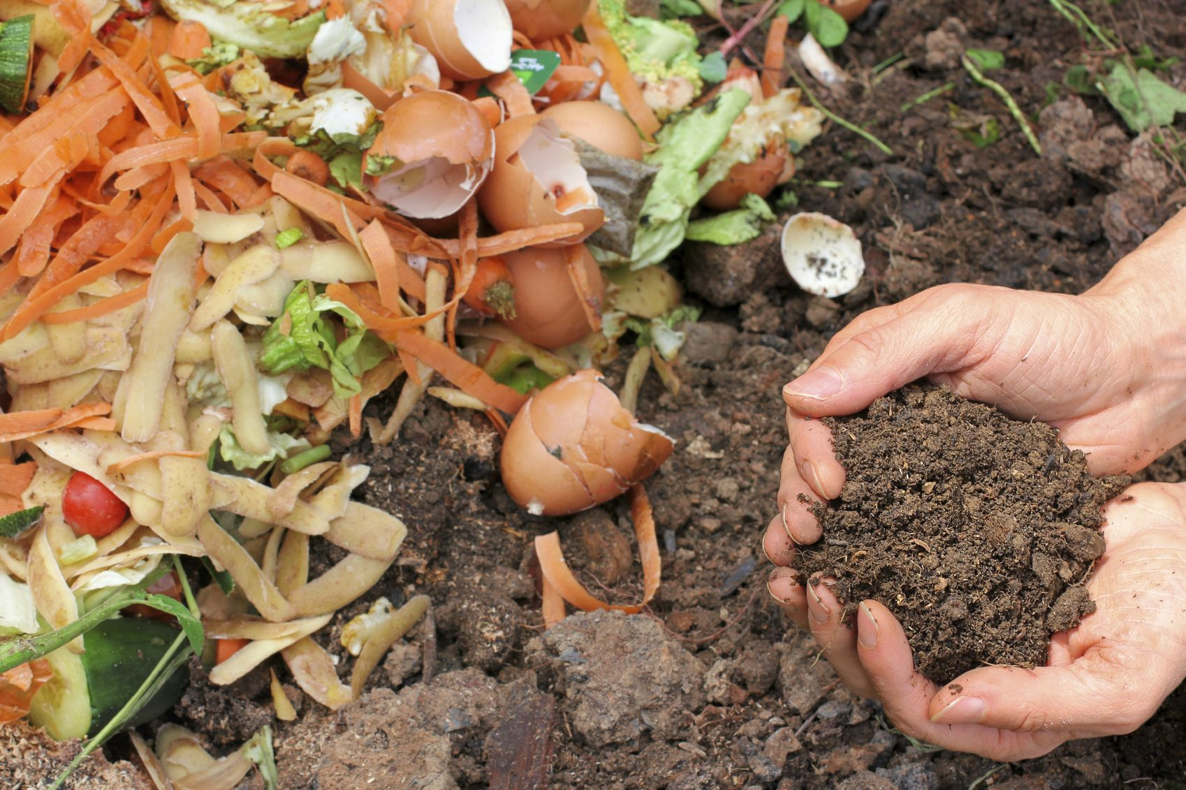 Composting How To Tips On Starting A Compost Pile At Home
