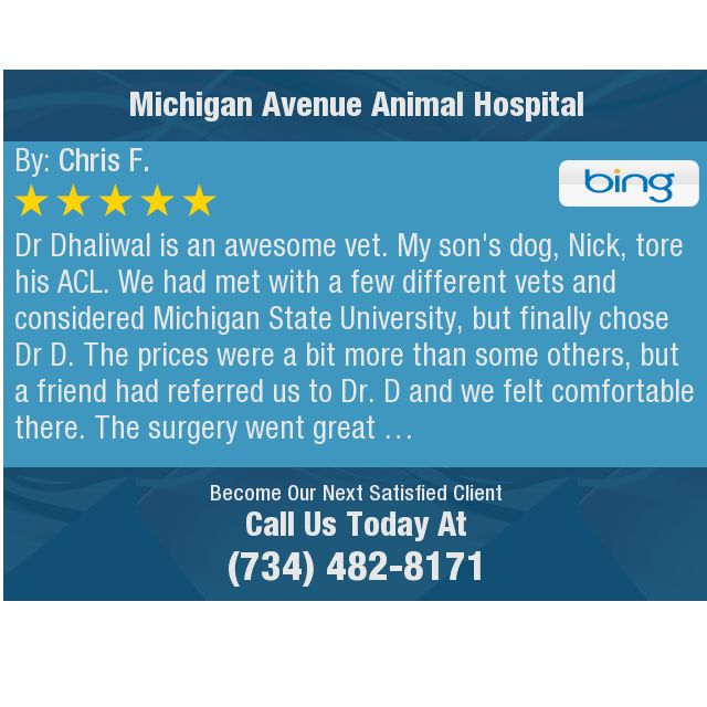 Dr Dhaliwal Is An Awesome Vet My Son S Dog Nick Tore His Acl
