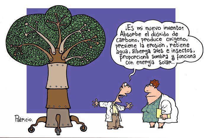 El árbol, que gran invento