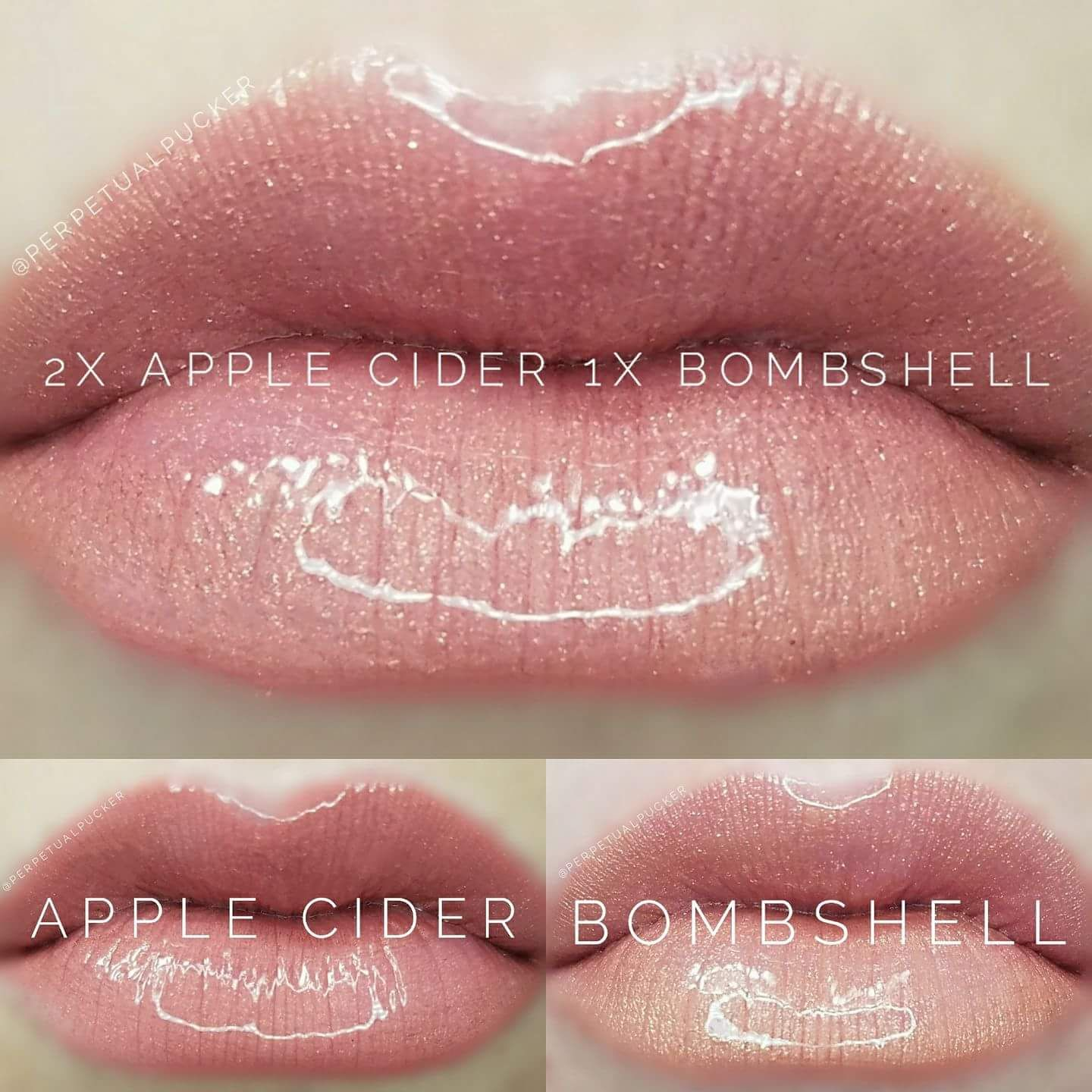 lipsense color blend  25 per color  20 for sealing gloss  lip color that lasts all day 4