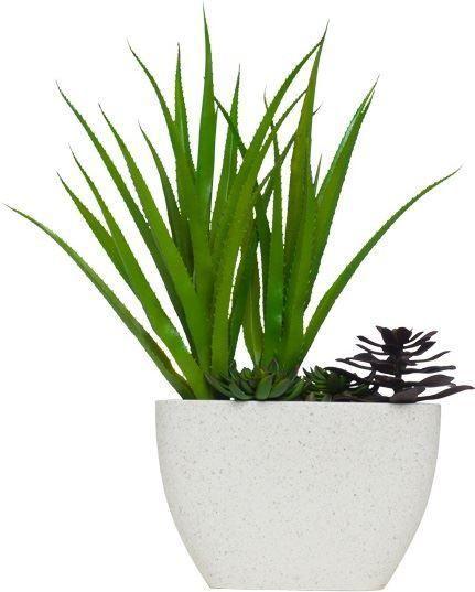 Pandanus/Succulent In Terrazzo Pot Succulents, Pot, Faux