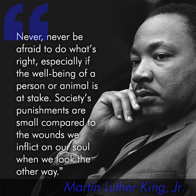 Nature Quotes From Martin Luther King, Jr. (With images) | Dr ...