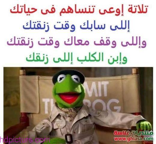 نكت تحشيش مضحكة 2017 صور مضحكة جدا تحشيش عراقي Funny Jok Fun Quotes Funny Arabic Funny