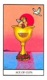 Ace Of Cups Connolly Tarot Deck Tarot Card Meanings Tarot