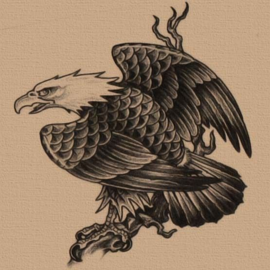free eagle tattoo designs eagles pinterest eagle tattoos tattoo designs and tattoo. Black Bedroom Furniture Sets. Home Design Ideas