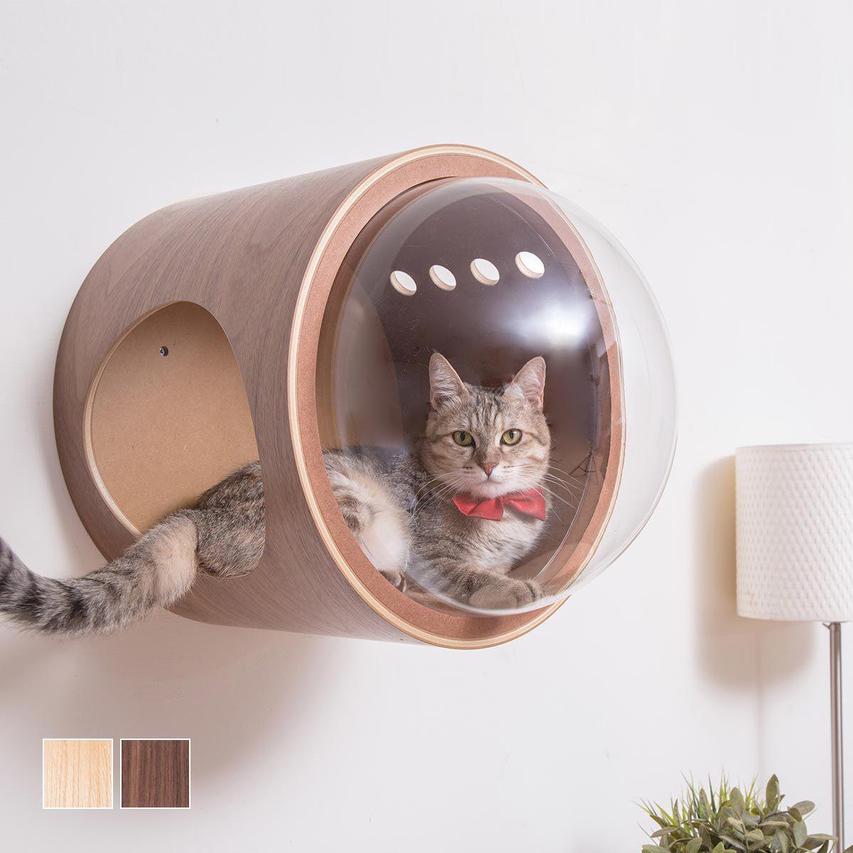 【楽天市場】my zoo 猫 ベッド キャットタワー 木製 壁 猫家具 猫ハウス キャットウォーク キャットステップ