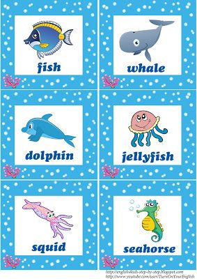 Deep In The Ocean Deep In The Sea Song For Kids Animal Flashcards Sea Animals Preschool Under The Sea Animals