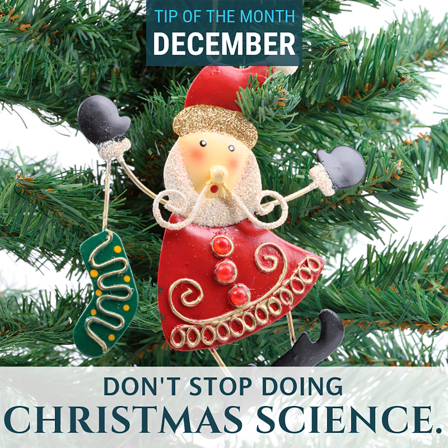 Christmas Science Homeschool Science Tip Of The Month