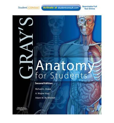 download gray anatomy for students 2nd edition