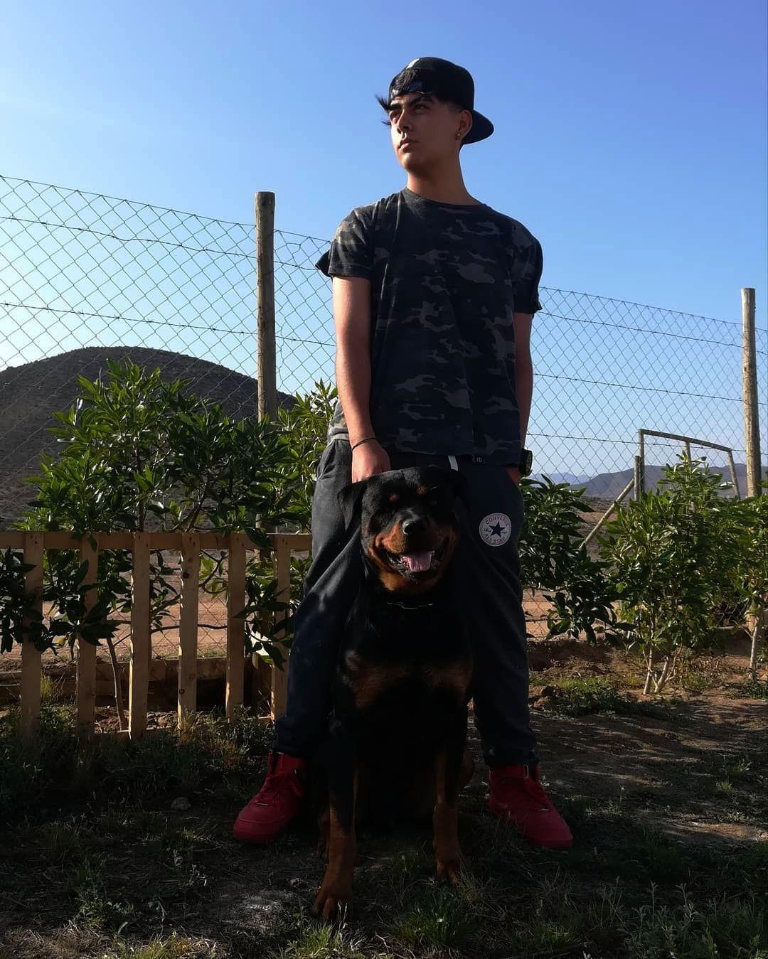#rottweiler #cantotrap #doglovers #trapmusic #doglover #fitness #website #bendiga #images #perros #t...