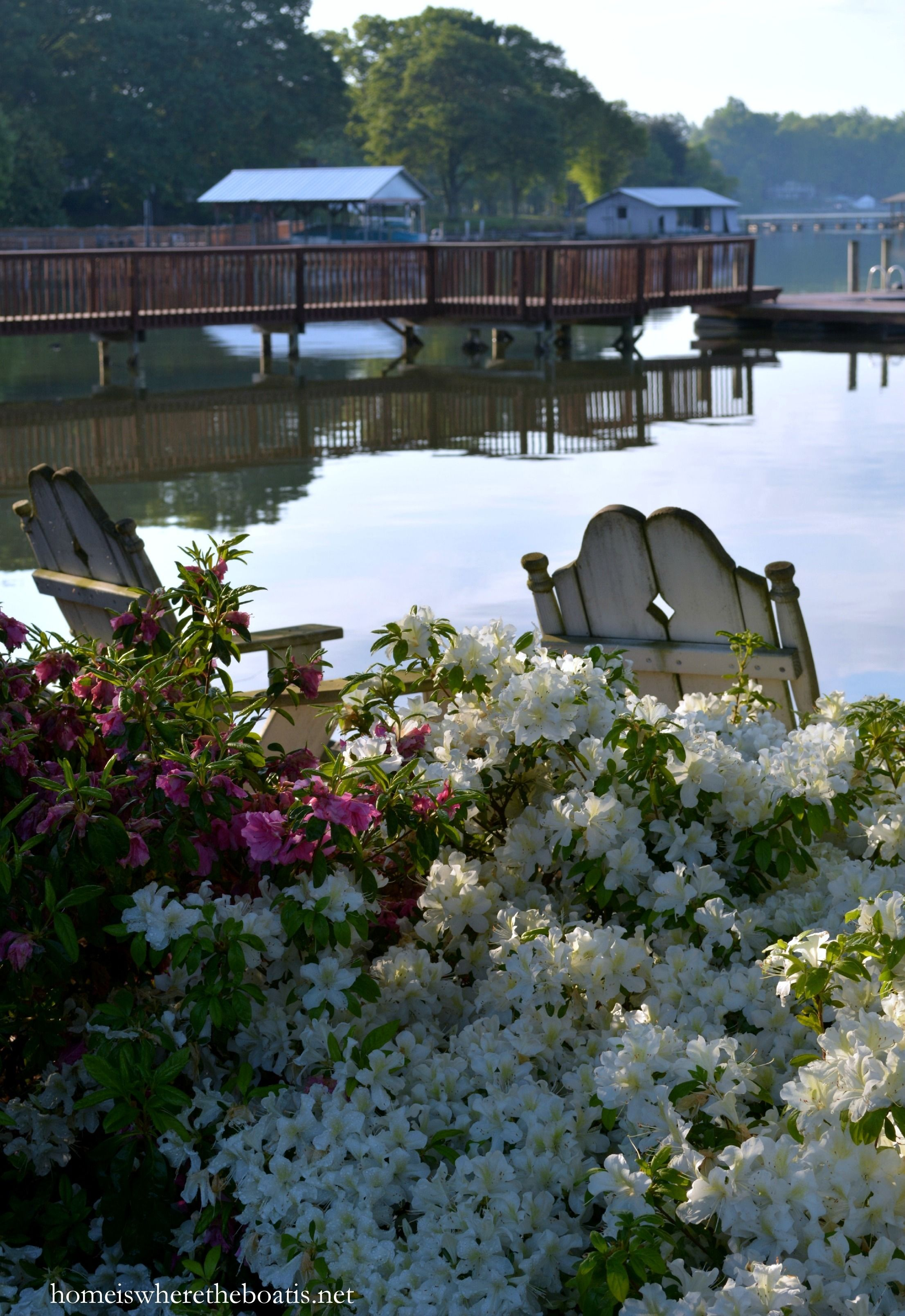 Weekend Waterview and Garden Bits & Pieces Lakeside